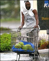 Nassau resident collecting coconuts that fell from trees as Hurricane Jeanne passed over the Bahamas