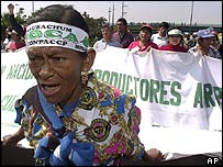 Peruvian coca farmers march towards the capital