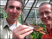 Paignton Zoo head reptile keeper Rod Keen and Curator of Plants Ian Turner with a Standlings day gecko