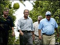 President Bush touring orange groves