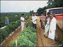 Trabajadores ilegales en EE.UU.