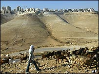 Palestinian shepherd near Maale Adumin settlement