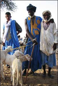 Men with their goats at Kiffa's cattle market in Mauritania