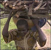 Nigerian woman carrying firewood