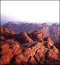Mt Sinai