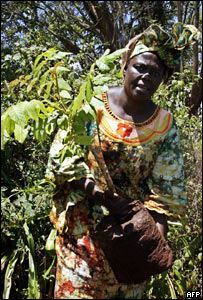 Wangari Maathai plants a tree in celebration