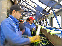 Workers from eastern Europe