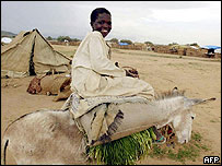Sudan refugee on a donkey