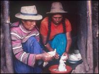 Peruvian women prepare a meal with guinea pigs (file photo)