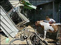 Palestinian youth rubs the back of a horse as it stands next to its barn at the destroyed Rafah zoo