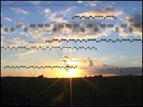 Morse sunset