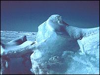 Ice berg   Noaa