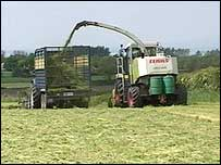 Few farms will be harvesting organic silage in NI this year