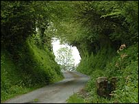 Sunken lane in Normandy