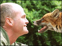 Simon King and an urban fox
