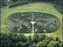 The peace maze has 6,000 Yew trees