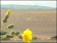A crop circle