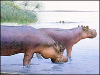 Artist's impression: Hippos survey an ancient Norfolk, NHM