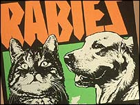 Poster warning of the dangers of rabies (archive)