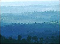 Kenya's Shimba Hills