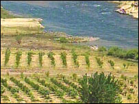 A lush valley in Iraqi Kurdistan