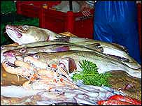 Fish on shop slab   A Kirby