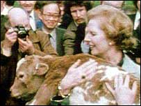 Thatcher and calf