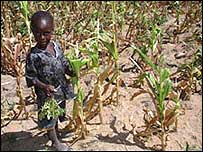 Child in rural Zimbabwe