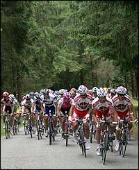 The peloton makes its way through the forest