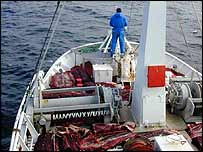Harpooner on prow of whaling boat   HNA