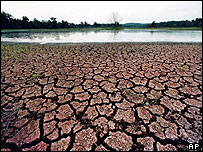 Drought in wetlands, AP