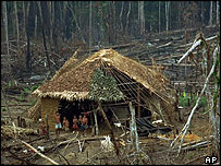 Yanomami Indian family in forest devastated by fire, Roraima state
