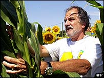 The Mayor of Begles, Noel Mamere, rips out GM crops near Toulouse