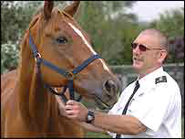 Smiley the horse with his rescuer Steve Dockery