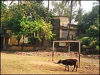 Football pitch in Kerala. Copyright Mike Geddes.