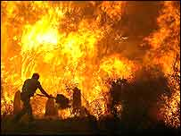 A man tries to fight a forest fire early morning in Boticas, Vila Real, northern Portugal