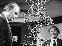 Francis Crick (left) and James Watson (right) with a model of the DNA double helix