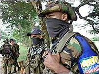 Combatientes de las AUC