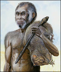 Homo floresiensis, National Geographic