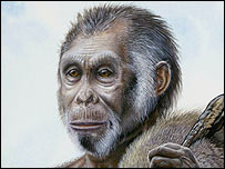 Dibujo del homo floresiensis (Imagen: National Geographic)