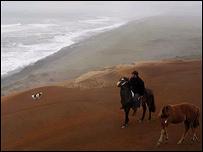 Mar cerca de Puerto Saavedra, Chile. Foto: Manuel Toledo