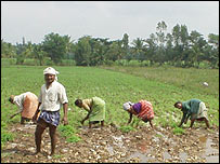 Farmers in the southern state of Karnataka