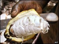 A farmer in Ivory Coast holding a cocoa pod