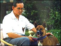 King Bhumibol Adulyadej with Tongdaeng (2002)