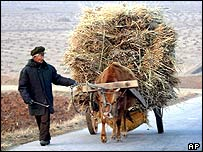 A North Korean farmer with an ox-cart full walks down the road to Pyongyang, 13 February 2003.
