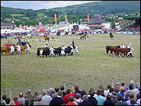 The Royal Welsh Show in July