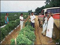 Inmigrantes trabajando en agricultura