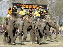 Scotland's elephant polo team