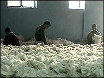 Egyptian workers unpacking raw cotton