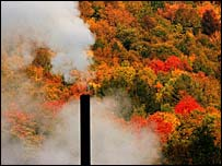 A smokestack in front a forest scene